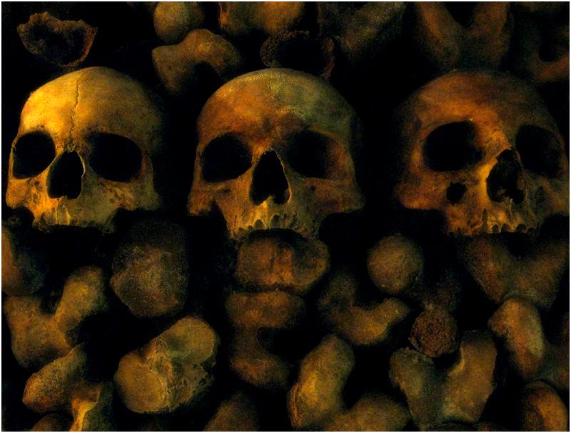 Catacombes 6  de Zayed