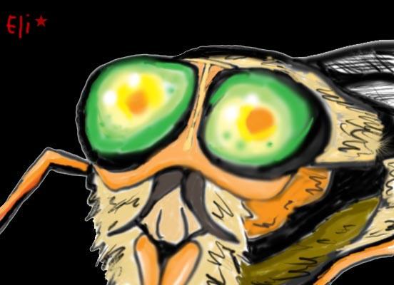 La mouche  d'inconnu